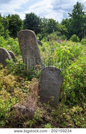 Old abandoned Jewish cemetery in Nadvirna town in Ukraine (Ukrainian Carpathians region).