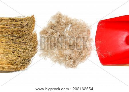 Cleaning wool and hair of pet. Cleaning wool and hair with a broom and shovel.