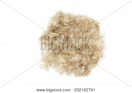 Ball of wool hair close-up. Ball of hair isolated on white background. Cleaning of wool and hair. Wool of domestic animals pet.