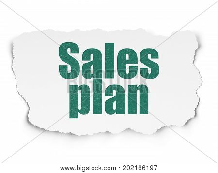 Advertising concept: Painted green text Sales Plan on Torn Paper background with  Tag Cloud