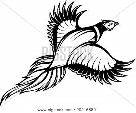 vector illustration of a stylish monochrome flying pheasant.