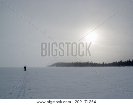 X-country skier in barren frozen blizzard winter landscape with sun shining through snowing clouds and drifting snow flurries