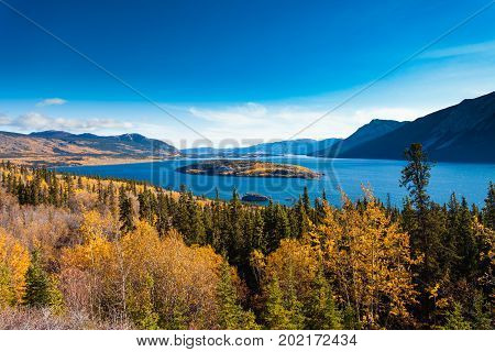 Indian summer autumn fall landscape of Windy Arm of Tagish Lake with Bove Island near Carcross Yukon Territory Canada