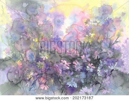Colorful august meadow flowers watercolor background. Birthday card
