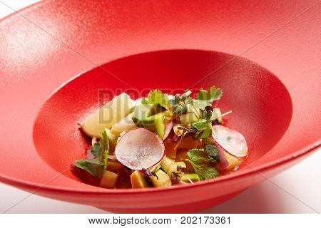 Menu in Pan-Asian cuisine - Tartar from sea scallop with passion fruit sauce with slices of vegetables and fresh greens on the red plate