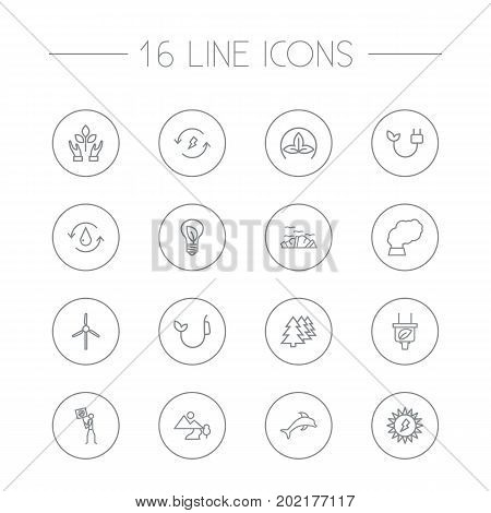 Collection Of Fuel, Pollution, Plug And Other Elements.  Set Of 16 Bio Outline Icons Set.
