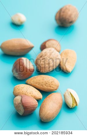 Different types of nuts in the nutshell on blue background. Dried nuts.