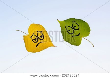 Green And Yellow Leaves With A Picture Of Happy And Sad Faces