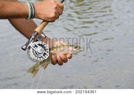 Closeup of rainbow trout and fishing reel held by fisherman