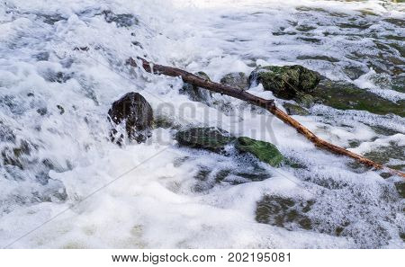 tree branch on rocks in stream small waterfall. background nature.
