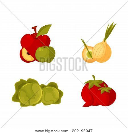 Set of cartoon farm products, fruit and vegetables - apple, bulb onion, cabbage, tomato, vector illustration isolated on white background. Cartoon style whole raw apple, bulb onion, cabbage, tomato