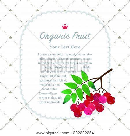 Colorful Watercolor Texture Nature Organic Fruit Memo Frame Red Rowan Berry