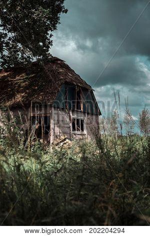 Neglected Farmhouse In Wild Garden Under Dark Cloudy Sky.