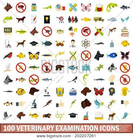 100 veterinary examination icons set in flat style for any design vector illustration