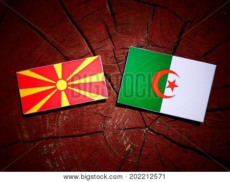 Macedonian Flag With Algerian Flag On A Tree Stump Isolated