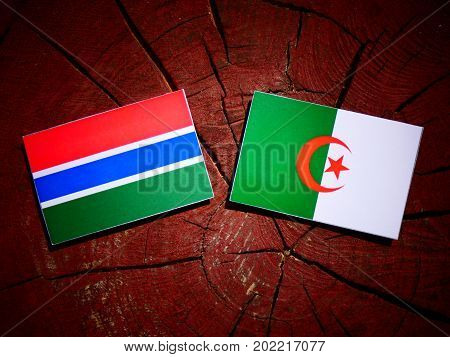 Gambia Flag With Algerian Flag On A Tree Stump Isolated