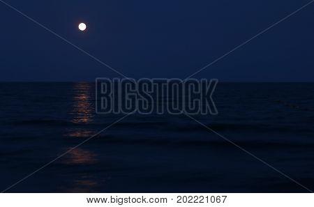 Full Moon By Night