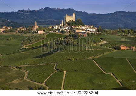 View over the village of Serralunga d'Alba and the wonderful hills with green vineyards of Langa Piedmont