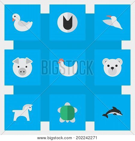 Elements Piggy, Swan, Tomcat And Other Synonyms Rooster, Cock And Cat.  Vector Illustration Set Of Simple Zoo Icons.