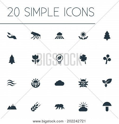 Elements Cloud, Pinnacle, Sunshine And Other Synonyms Beetle, Plant And Heat.  Vector Illustration Set Of Simple Bio Icons.