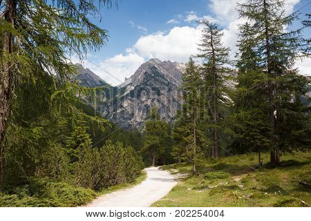 hiking trail near Lago di Braies in Italy