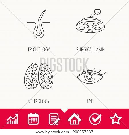 Eye, neurology brain and surgical lamp icons. Trichology linear sign. Edit document, Calendar and Graph chart signs. Star, Check and House web icons. Vector