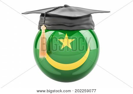 education and study in Mauritania concept 3D rendering