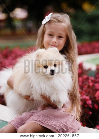 A portrait of smart, thoughtful young girl holding a cute fluffy puppy on a colorful summer park background. A gorgeous female child wearing a pastel dress and hugging a happy doggy.