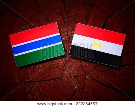 Gambia Flag With Egyptian Flag On A Tree Stump Isolated