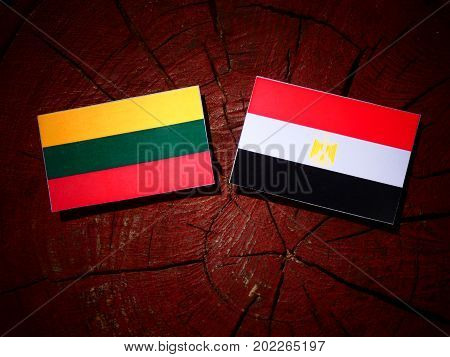 Lithuanian Flag With Egyptian Flag On A Tree Stump Isolated
