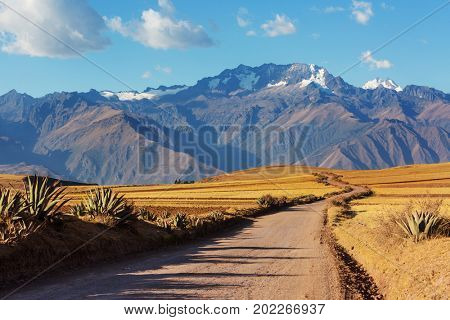 Pampas landscapes in  Cordillera de Los Andes, Peru, South America