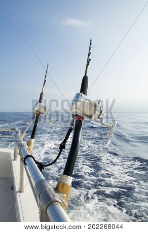 Close up of rod and reel fishing rigs in holders tethered to rails with ocean and blue sky.