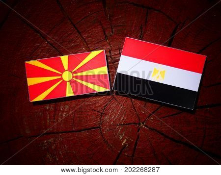 Macedonian Flag With Egyptian Flag On A Tree Stump Isolated