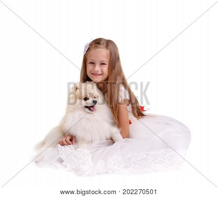 A charming little girl sitting and playing with a fluffy puppy isolated on a white background. Beautiful little princess in a fancy dress having fun with a pet dog. Childhood, joy concept. Copy space.