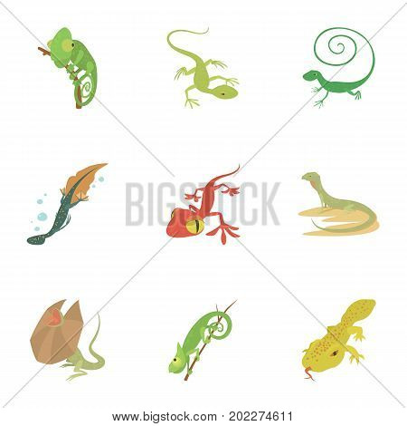 Small lizard icons set. Cartoon set of 9 small lizard vector icons for web isolated on white background