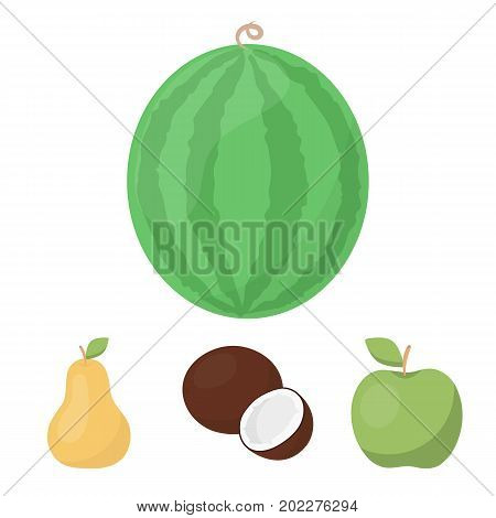 Coconut, apple, pear, watermelon.Fruits set collection icons in cartoon style vector symbol stock illustration .