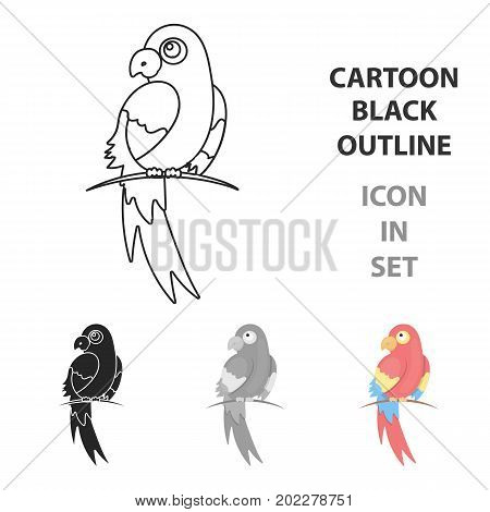 Parrot icon cartoon. Singe animal icon from the big animals cartoon.