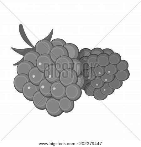 Raspberry, sweet fruit.Fruit single icon in monochrome style vector symbol stock illustration .