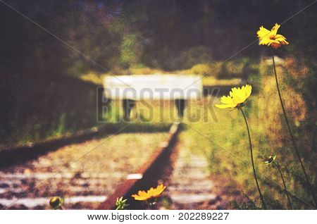 Flowers and weeds at the end of an abandoned old railway line. Vintage, grunge textured and retro toned image.