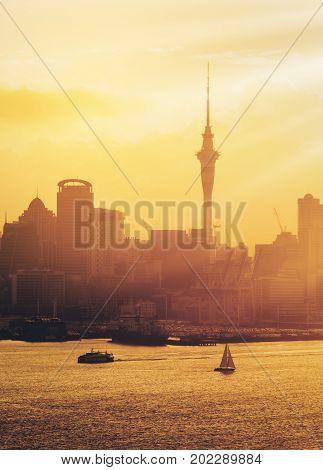 Golden Sunset At Auckland City, New Zealand.