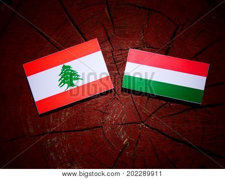 Lebanese Flag With Hungarian Flag On A Tree Stump Isolated