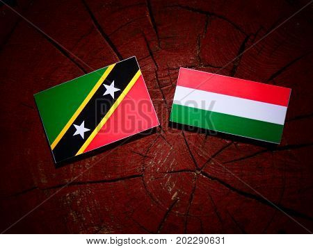 Saint Kitts And Nevis Flag With Hungarian Flag On A Tree Stump Isolated