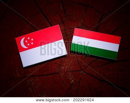 Singaporean Flag With Hungarian Flag On A Tree Stump Isolated