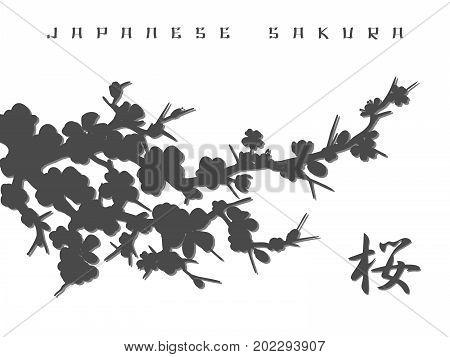 Monochromic japanese sakura silhouette and kanji background, vector illustration
