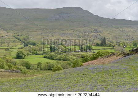Scenery in Dunnerdale in the English Lake District