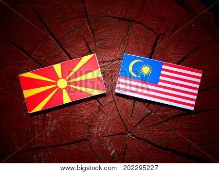 Macedonian Flag With Malaysian Flag On A Tree Stump Isolated