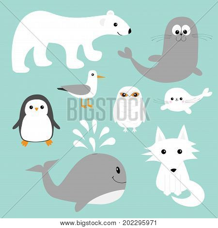 Arctic polar animal set. White bear owl penguin Seal pup baby harp sea lion fox wolf whale albatross seagall. Kids education cards Cute cartoon character Blue background Isolated Flat design Vector