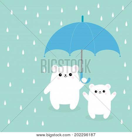 Two polar white small little bear cub holding umbrella. Rain drops. Cute cartoon baby character. Arctic animal collection. Love card Blue background. Isolated. Vector illustration