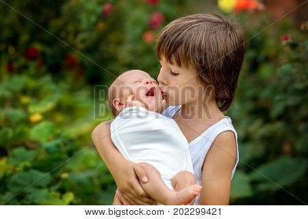 Little Children, Boys With A Newborn Brother In The Park
