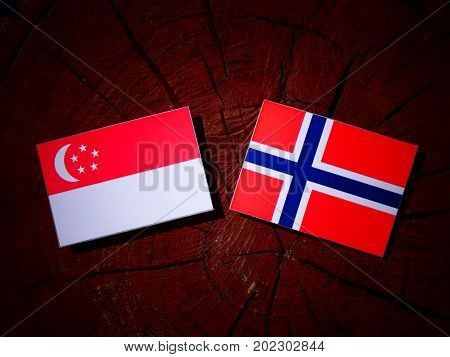Singaporean Flag With Norwegian Flag On A Tree Stump Isolated